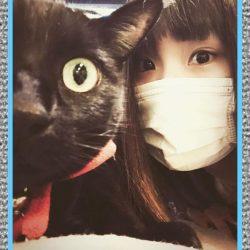 Medicamentos Para la Alergia a los Gatos